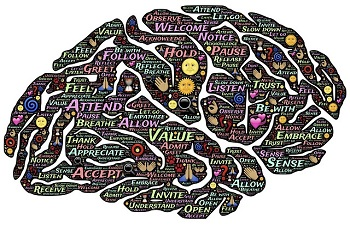 Как учить язык: за партой или за границей? Мозг